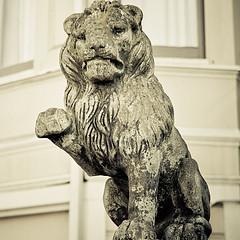 Fistbump lion